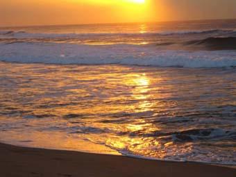 golden-sea-sun